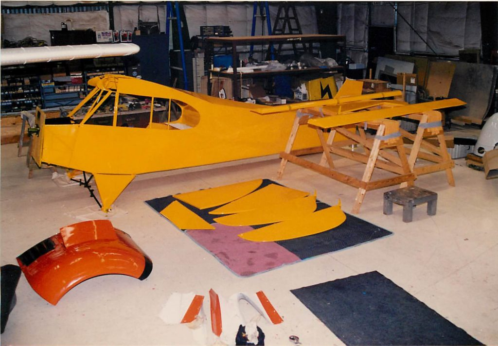 Fuselage and control surfaces painted